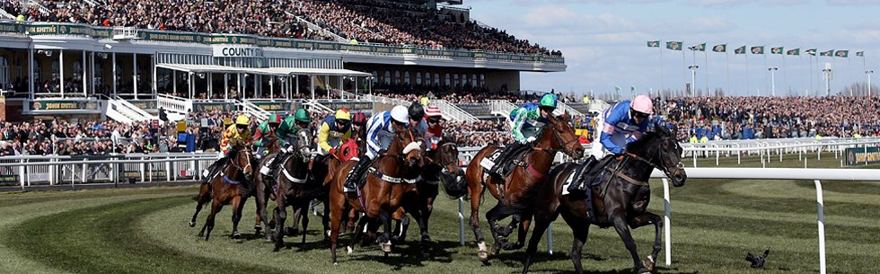 grand national trips