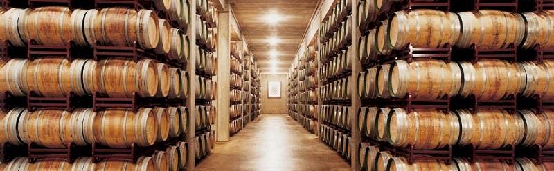 Rioja Marques de Riscal Cellar 800 x 248