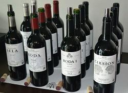 Roda Bottles all 250 x 182