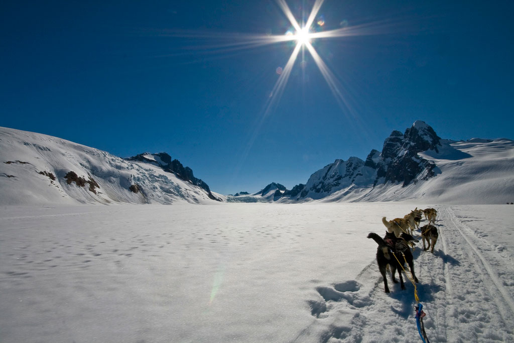 ice-hotel-6-dog-sledding