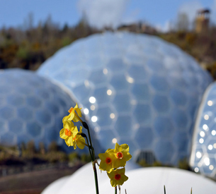 The Eden Project by Neil