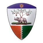 palio-sienna-forest