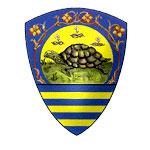 palio-sienna-turtle